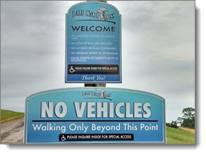 new sign